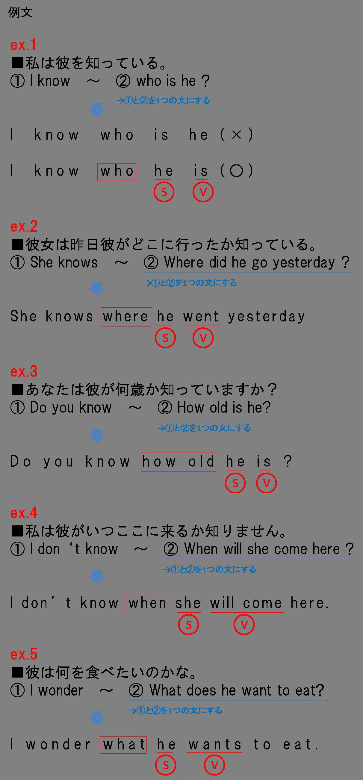 間接疑問文2